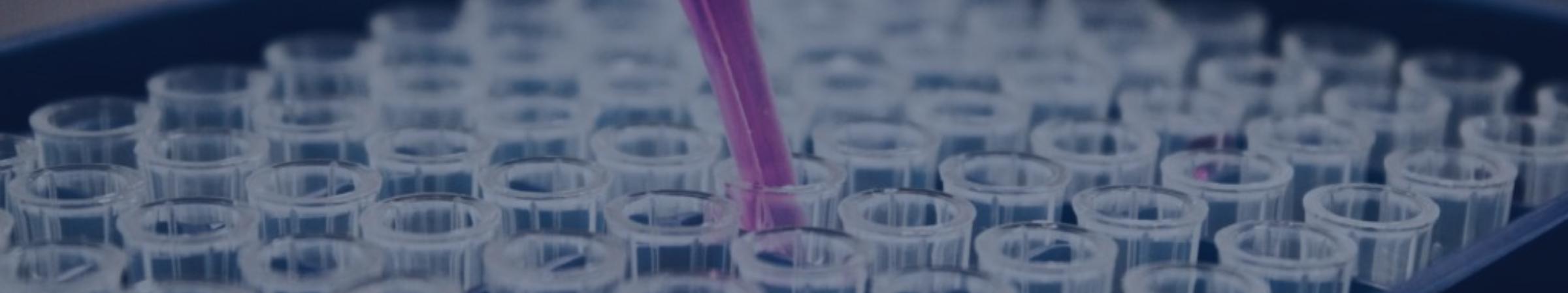 Extracellular Matrix Pharmacology Symposium banner