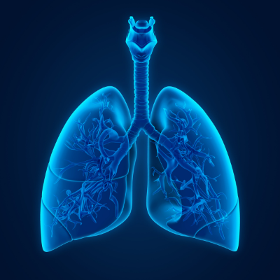 Working in Respiratory Diseases – Our Capabilities